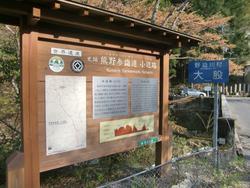 高野山から熊野本宮へ 熊野古道・小辺路1