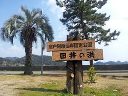 歩き遍路の好ルート、田井ノ浜